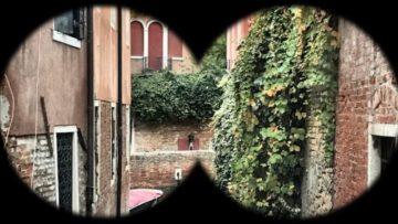 Safari Urbano a Venezia
